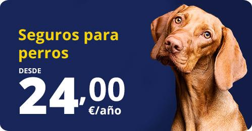contrata seguro perros