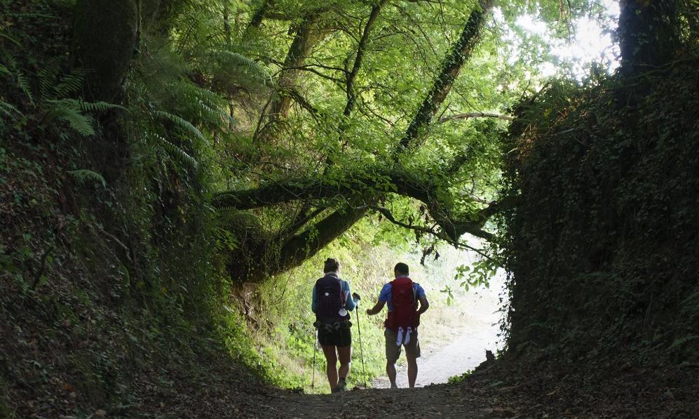 camino-santiago-sarria-raul-villalon-flickr