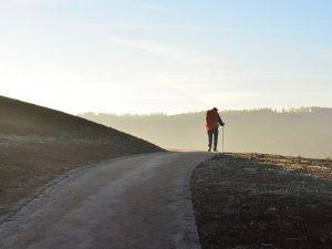 Cuál es la ruta más fácil del Camino de Santiago