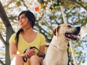 ¿Qué responsabilidad civil tiene el propietario de un animal?