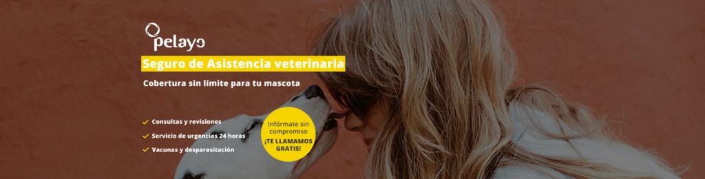 seguro mascotas pelayo